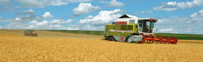 Domeniile Lungu Agricultura